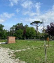 sansepolcro orti sociali villa serena